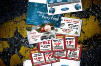 Holiday Card Sales & Service Combo mailer